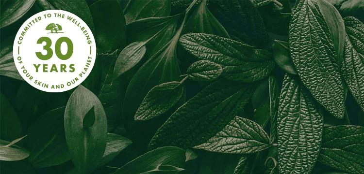 Origins Green Initiatives